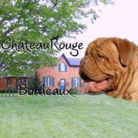 Chateau Rouge.jpg